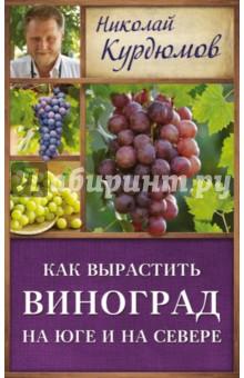 Как вырастить виноград на Юге и на Севере - Николай Курдюмов