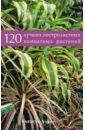 Борис Головкин - 120 лучших пестролистных комнатных растений обложка книги