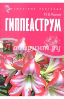 Гиппеаструм - Юрий Рогачев