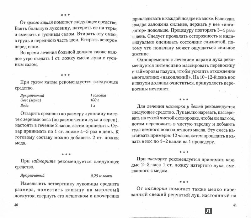 Иллюстрация 1 из 2 для Лук: на страже здоровья - Иван Неумывакин | Лабиринт - книги. Источник: Лабиринт