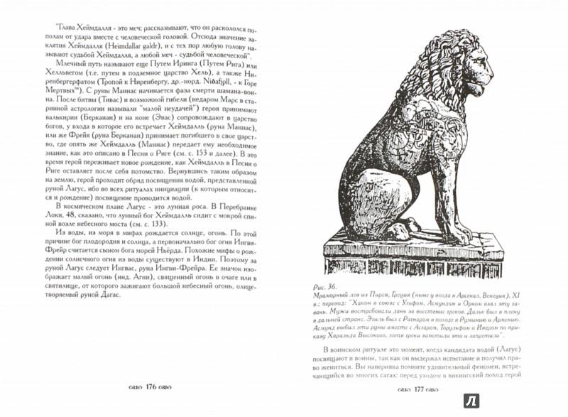 Иллюстрация 1 из 17 для Священные руны. Мистические символы Севера - Геза Неменьи | Лабиринт - книги. Источник: Лабиринт