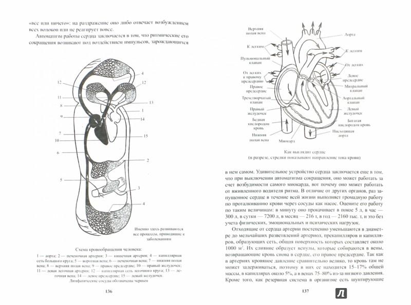 Иллюстрация 1 из 28 для Позвоночник: мифы и реальность - Иван Неумывакин | Лабиринт - книги. Источник: Лабиринт