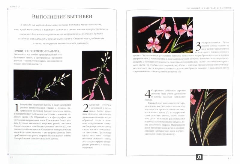 Иллюстрация 1 из 31 для Цветы. Практическое руководство - Хелен Стивенс | Лабиринт - книги. Источник: Лабиринт