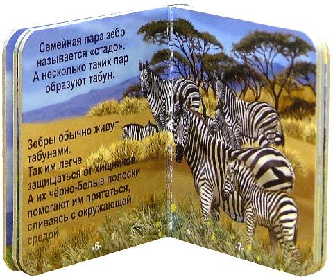 Иллюстрация 1 из 10 для В зоопарке. Чудо-коробочка | Лабиринт - книги. Источник: Лабиринт