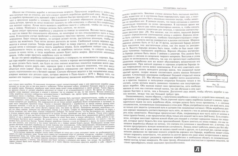 Иллюстрация 1 из 16 для Лошади. Книга первая - Гешвенд, Тихомиров, Кулешов | Лабиринт - книги. Источник: Лабиринт