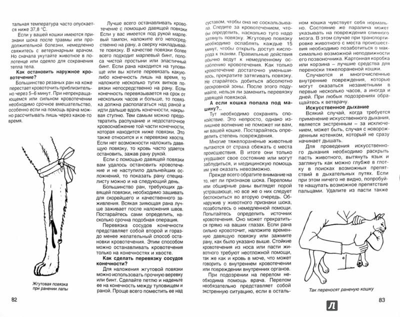 Иллюстрация 1 из 14 для Кошка в вашем доме - Николай Непомнящий | Лабиринт - книги. Источник: Лабиринт