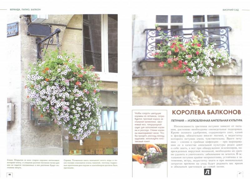 Иллюстрация 1 из 21 для Веранда, патио, балкон, или Переходные пространства сада - Юлия Попова | Лабиринт - книги. Источник: Лабиринт