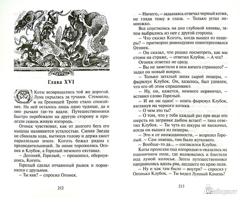 Иллюстрация 1 из 33 для Стань диким! - Эрин Хантер | Лабиринт - книги. Источник: Лабиринт