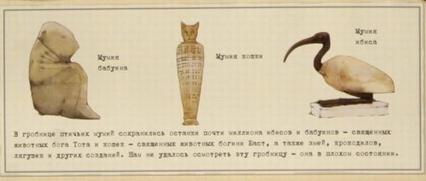 Иллюстрация 1 из 47 для Египтология   Лабиринт - книги. Источник: Лабиринт