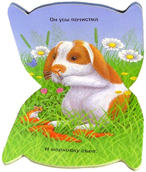 Иллюстрация 1 из 11 для Пушистые мордочки. Крольчонок Колька | Лабиринт - книги. Источник: Лабиринт