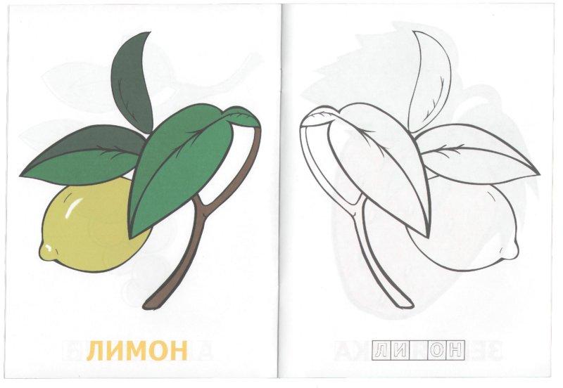Иллюстрация 1 из 3 для Назови и раскрась. Выпуск 8 | Лабиринт - книги. Источник: Лабиринт