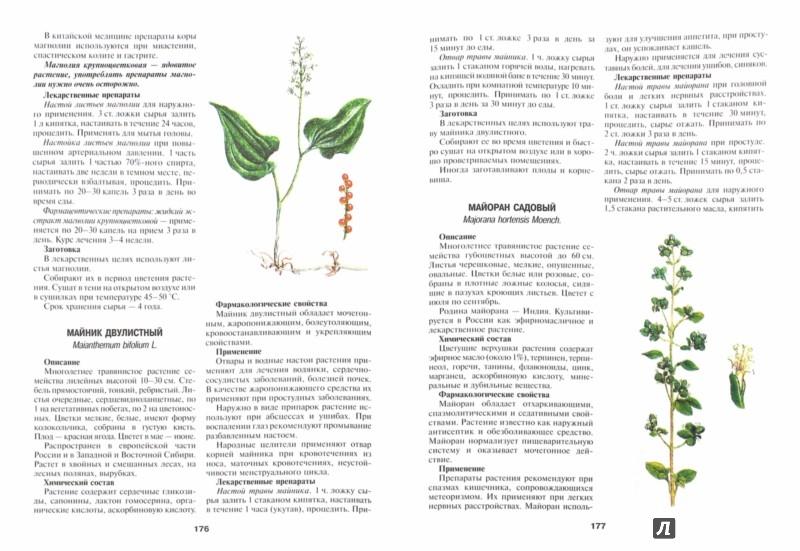 Иллюстрация 1 из 33 для Энциклопедия лекарственных растений. Самолечебник - Иван Куреннов | Лабиринт - книги. Источник: Лабиринт