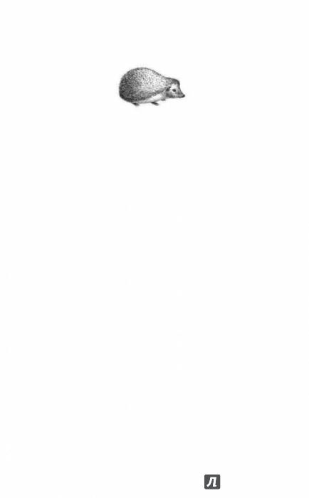 Иллюстрация 1 из 28 для Динка - Валентина Осеева | Лабиринт - книги. Источник: Лабиринт