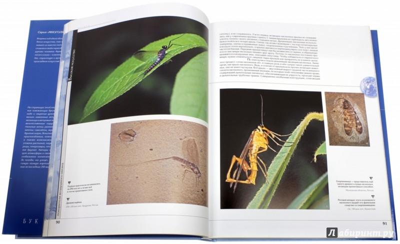 Иллюстрация 1 из 17 для Воздух | Лабиринт - книги. Источник: Лабиринт