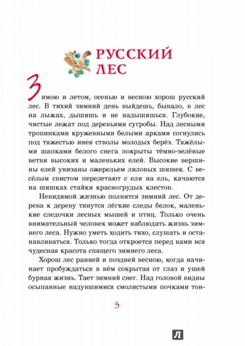 Иллюстрация 1 из 42 для Русский лес - Иван Соколов-Микитов | Лабиринт - книги. Источник: Лабиринт