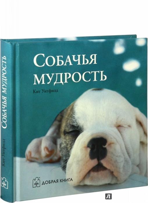 Иллюстрация 1 из 5 для Собачья мудрость | Лабиринт - книги. Источник: Лабиринт