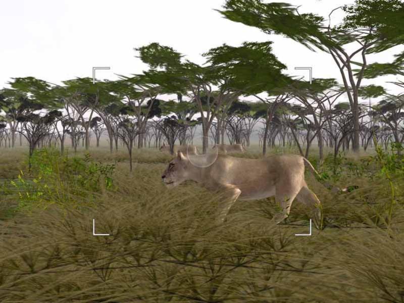 Иллюстрация 1 из 6 для Wild Earth: Фото-сафари (DVDpc) | Лабиринт - софт. Источник: Лабиринт