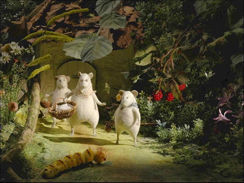 Иллюстрация 1 из 15 для Три маленькие белые мышки: Визит морской крысы (2CDpc) | Лабиринт - софт. Источник: Лабиринт