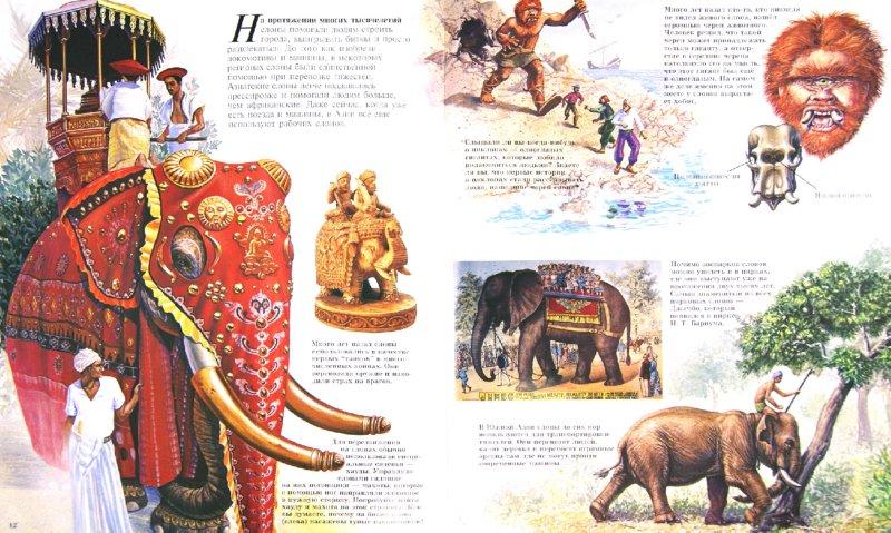 Иллюстрация 1 из 10 для Слоны - Джон Веско | Лабиринт - книги. Источник: Лабиринт