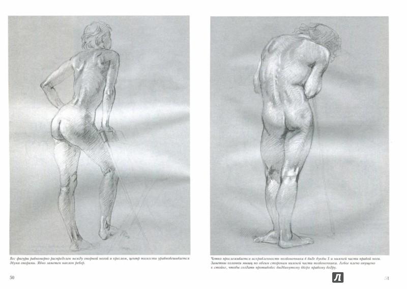 Иллюстрация 1 из 33 для Обнаженная натура - Джозеф Шеппард   Лабиринт - книги. Источник: Лабиринт