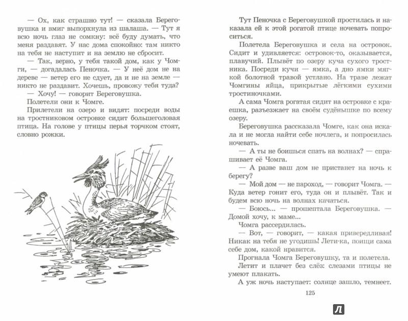 Иллюстрация 1 из 9 для Чей нос лучше? - Виталий Бианки   Лабиринт - книги. Источник: Лабиринт