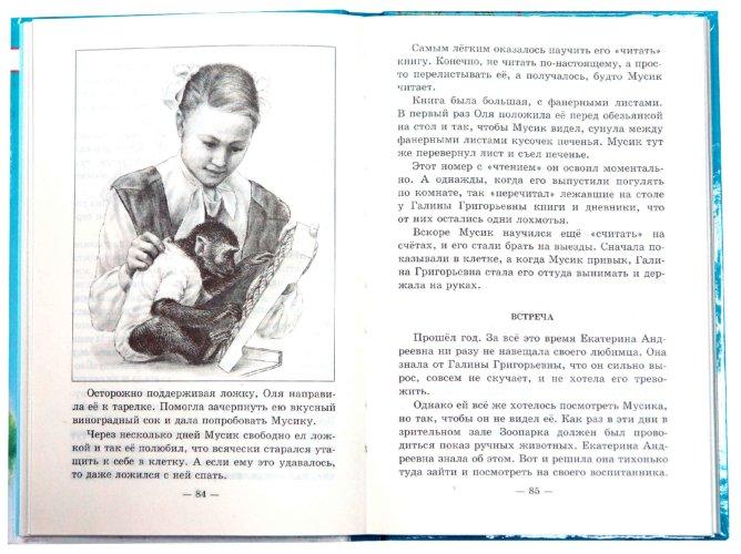 Иллюстрация 1 из 7 для Питомцы зоопарка - Вера Чаплина | Лабиринт - книги. Источник: Лабиринт