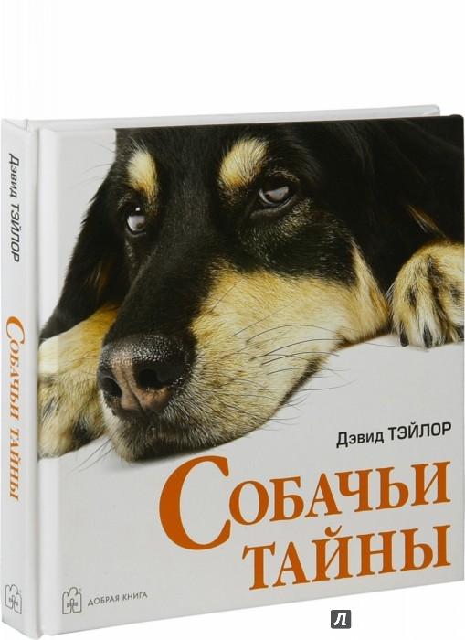 Иллюстрация 1 из 9 для Собачьи тайны - Дэвид Тэйлор | Лабиринт - книги. Источник: Лабиринт