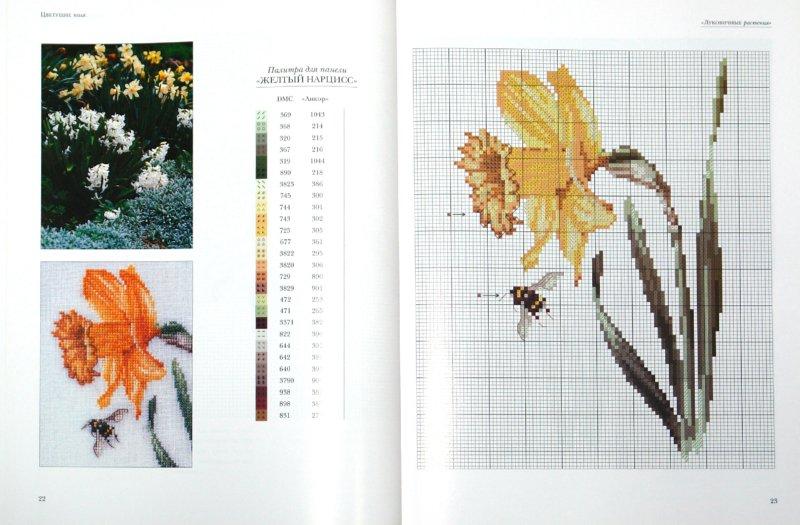 Иллюстрация 1 из 4 для Вышивка крестом: Райский сад своими руками - Гоувернер, Дьюхерст | Лабиринт - книги. Источник: Лабиринт