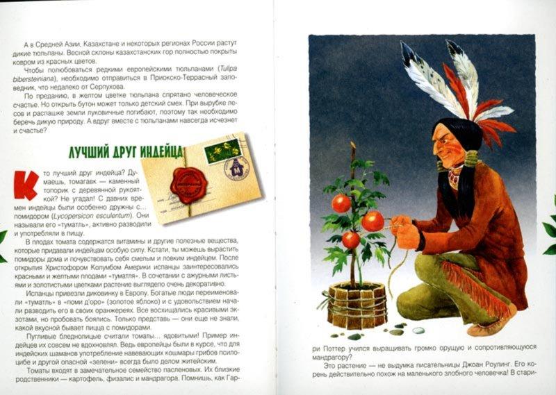 Иллюстрация 1 из 32 для Клад на подоконнике: секретные материалы садовода - Ольга Кувыкина | Лабиринт - книги. Источник: Лабиринт