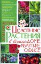 Целебные растения в вашем доме, квартире, офисе, Аксенова Лариса Владимировна