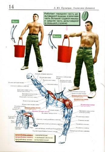 Иллюстрация 1 из 13 для Анатомия фитнеса - Андрей Кузнецов | Лабиринт - книги. Источник: Лабиринт