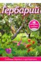 Гербарий: Садовые деревья и кустарники