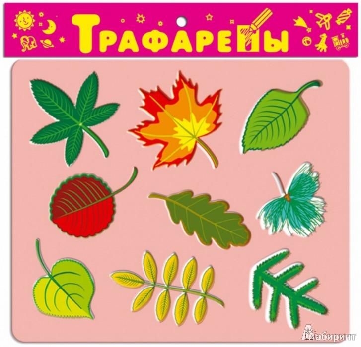 Иллюстрация 1 из 9 для Трафареты пластиковые 1612 Листья | Лабиринт - игрушки. Источник: Лабиринт