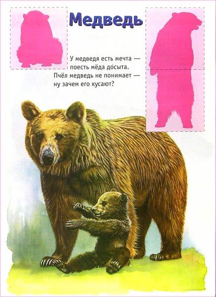 Иллюстрация 1 из 2 для Ребятам о зверятах. Львята (розовая) | Лабиринт - книги. Источник: Лабиринт