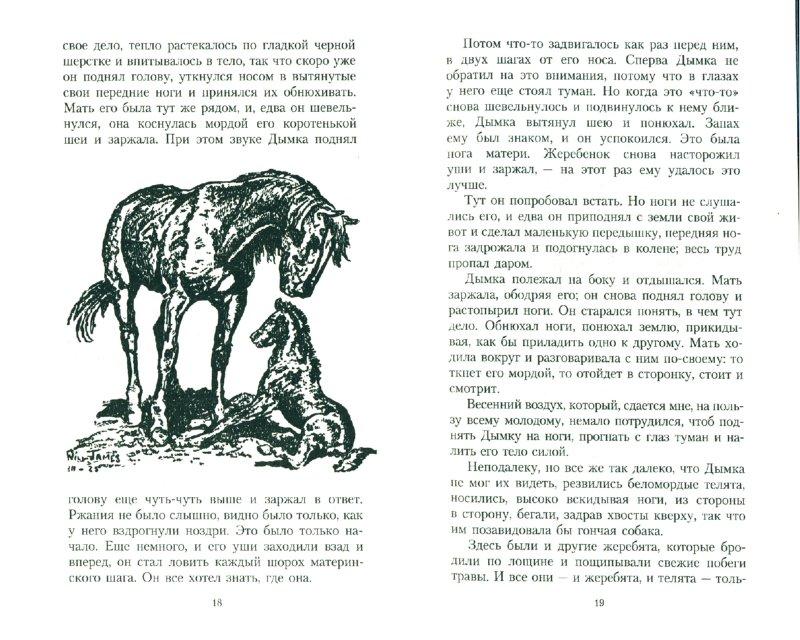 Иллюстрация 1 из 4 для Дымка - Виль Джемс | Лабиринт - книги. Источник: Лабиринт