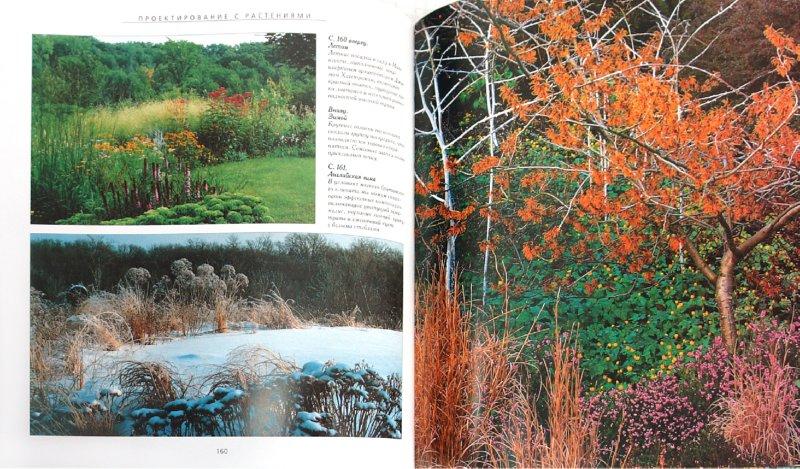 Иллюстрация 1 из 16 для Дизайн сада - Джон Брукс | Лабиринт - книги. Источник: Лабиринт
