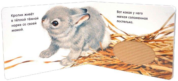 Иллюстрация 1 из 5 для Погладь пушистых малышей! Кролики | Лабиринт - книги. Источник: Лабиринт