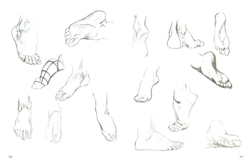 Иллюстрация 1 из 33 для Искусство рисования - Уилли Погейни | Лабиринт - книги. Источник: Лабиринт