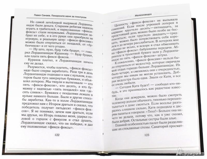 Иллюстрация 1 из 25 для Похороните меня за плинтусом - Павел Санаев   Лабиринт - книги. Источник: Лабиринт