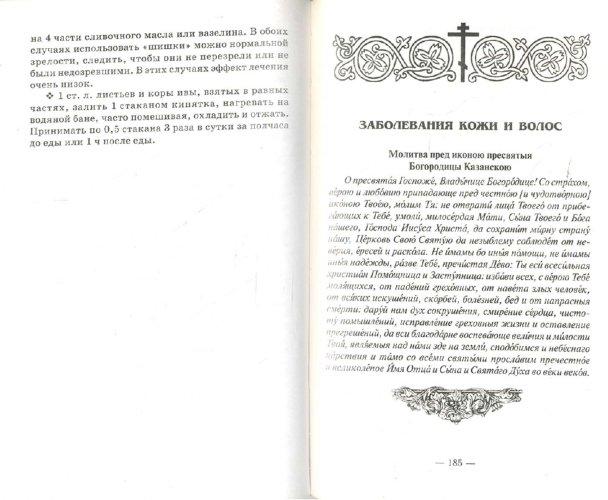 Иллюстрация 1 из 15 для Православный лечебник. Рецепты, проверенные временем - Т. Фролова   Лабиринт - книги. Источник: Лабиринт