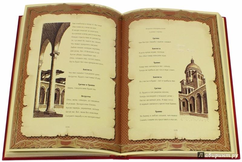 Иллюстрация 1 из 7 для Укрощение строптивой - Уильям Шекспир | Лабиринт - книги. Источник: Лабиринт