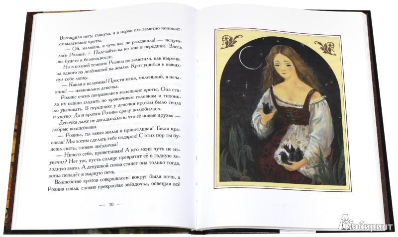 Иллюстрация 1 из 44 для Сказки о сиротках и бедных девушках | Лабиринт - книги. Источник: Лабиринт