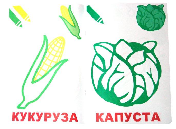 Иллюстрация 1 из 5 для Маленький художник. Выпуск 5. Овощи   Лабиринт - книги. Источник: Лабиринт