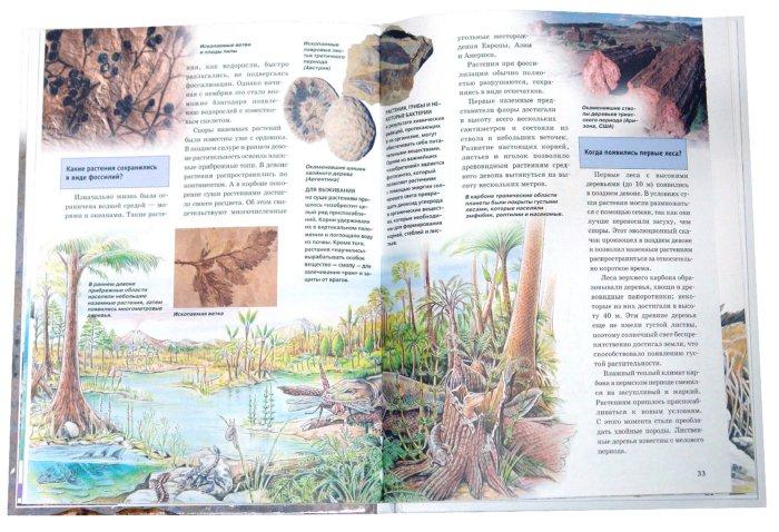 Иллюстрация 1 из 5 для Древние ископаемые - Буггиш, Буггиш   Лабиринт - книги. Источник: Лабиринт