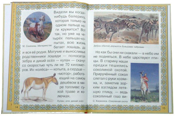Иллюстрация 1 из 17 для Животные. Кто самый-самый? - Инна Гамазкова | Лабиринт - книги. Источник: Лабиринт