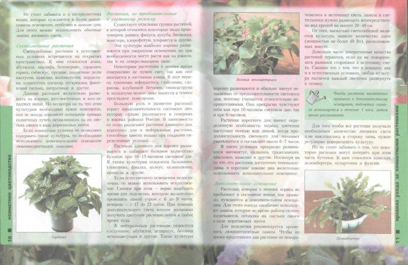 Иллюстрация 1 из 46 для Лучшие комнатные растения - Моисей Миллер   Лабиринт - книги. Источник: Лабиринт