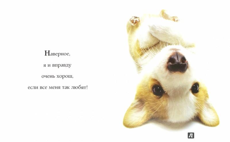 Иллюстрация 1 из 28 для Самые очаровательные собаки | Лабиринт - книги. Источник: Лабиринт