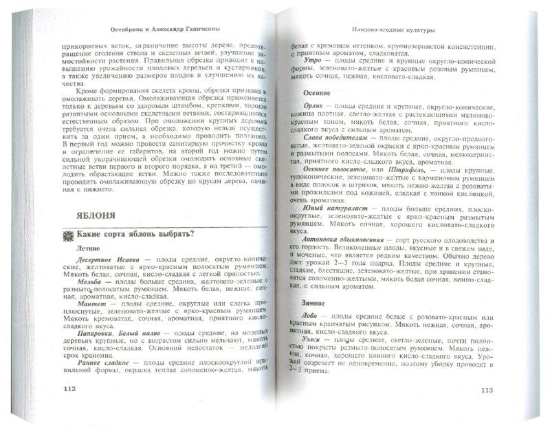 Иллюстрация 1 из 13 для Огородникам и садоводам. 350 самых важных вопросов, 350 самых полных ответов - Ганичкина, Ганичкин   Лабиринт - книги. Источник: Лабиринт
