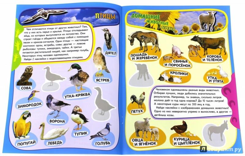 Иллюстрация 1 из 14 для Учись, играя. 5-7 лет. Животные | Лабиринт - книги. Источник: Лабиринт