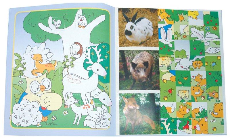 Иллюстрация 1 из 11 для Наклеивай, раскрашивай, учись! Лесные животные   Лабиринт - книги. Источник: Лабиринт